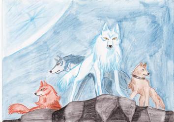 Wolf's Rain by Silverkitsune26