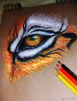 Tiger Eye by KhaliaArt