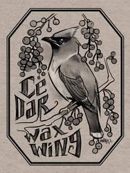 Cedar Waxwing Ink by yolque