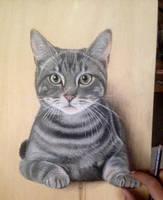 Meoww by ivanhooart