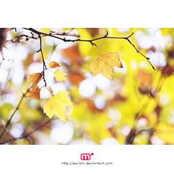 i wait for my autumn by earam