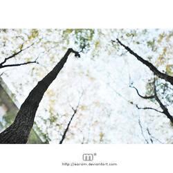 i wait for my autumn ii by earam