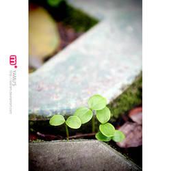 maybe a little hope... ii by earam