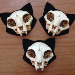 Mini Cat Skull Brooches by Bueshang