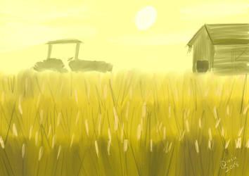 Field of Wheat by Raiinbolivia