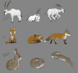 Random Animals by Raiinbolivia
