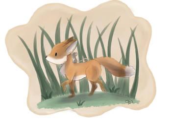 Fox And Mouse on A Walk by Raiinbolivia