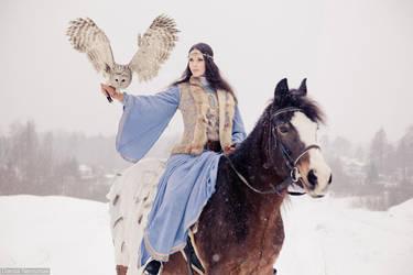 Owl's hunting 4 by Danila-Neroznak