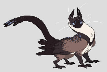 Siamese Owlcat by QuillCoil