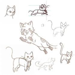 Kitty Collage by BewareoftheDarke