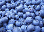 Blueberries by MauraGreen
