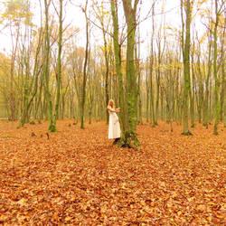 Wood elf by MauraGreen