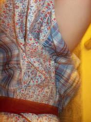 The Dress 8 by sexpotartsmoke