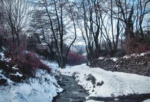 Winterism 3 by Zoroo