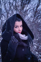 Winter Walk by Zoroo