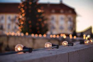 Lights Everywhere by Zoroo