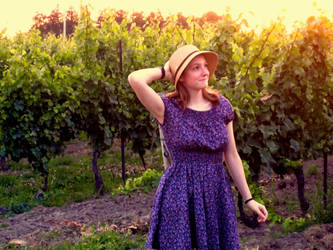 Wine Country by 3sarahtop