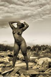Take It Back by dwingephotography