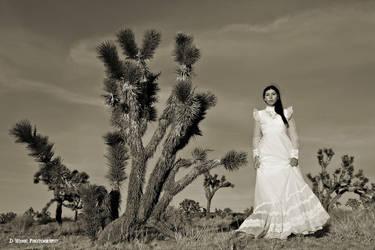 Desert Wedding by dwingephotography