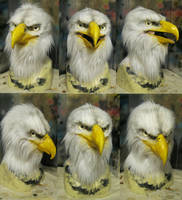 Final bald eagle mask by Crystumes