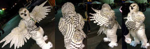 Snowy owl full costume! by Crystumes