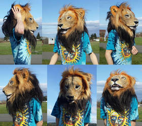 Lion mask worn by Crystumes