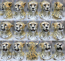 Cheetah mask commission by Crystumes