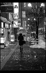 Snowy Skirt by billsabub