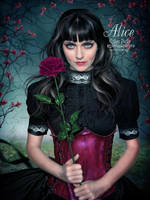 Alice by EstherPuche-Art