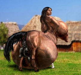 Full Centaur by msgotu