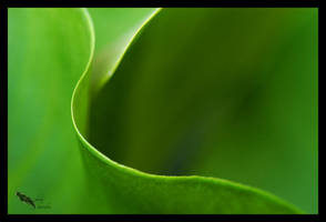 green wave by chibiharuka