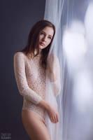 Castle of glass, armor of lace by DmitryElizarov