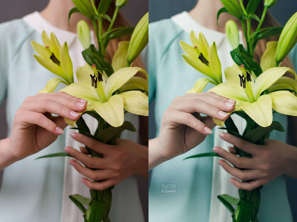 Flower Series: Lily #3 (before and after) by DmitryElizarov