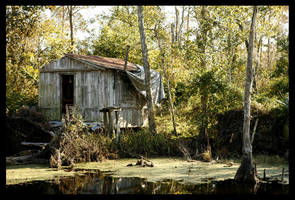 Home on the Bayou by SZenz