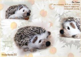 Hedgehog-Tosha by Nataly-firsova