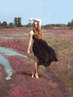 silent spring by mk-w