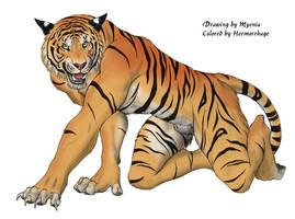 Tigerprowl by hermorrhage