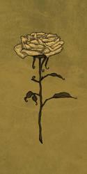 Golden Rose by Brandon-Schaefer