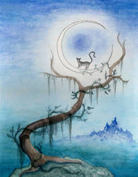 The Cat and The Moon by Brandon-Schaefer