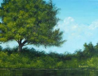 Riverside Oak by Brandon-Schaefer