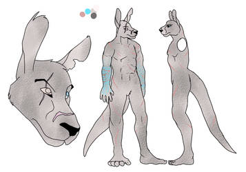 Daku-Commissioned Ref Sheet by sweentastic