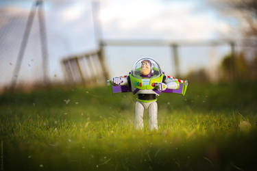 Buzz is landing by me! by TensDigitalArt