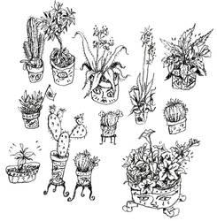 Illustration Flash Sheet ll: Houseplants by Hebbybobdige