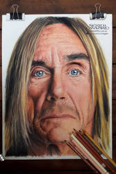 Iggy Pop by NestorCanavarro
