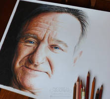 Robin Williams - WIP by NestorCanavarro