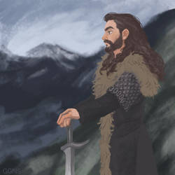 Thorin Oakenshield by ggns
