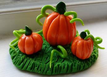 Mini Pumpkin patch by Greenhorngal