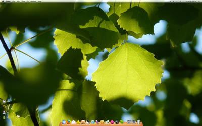 Summer Leaves by JR007