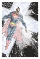 Superman by FreddieEWilliamsii
