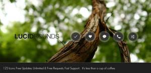 Lucid Rounds. by xNiikk